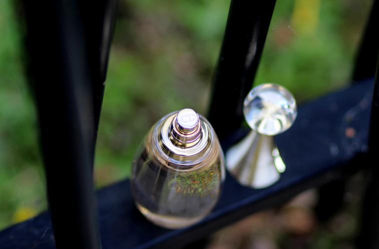 blog beaute nantes j adore de dior voile de parfum