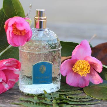 Vol de Nuit – Guerlain chez Origines Parfums