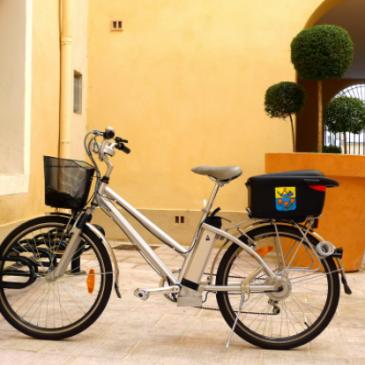 Idées de balades en vélos en Loire Atlantique