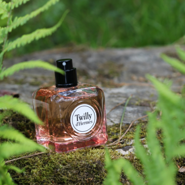 Twilly d'Hermès chez Origines Parfums