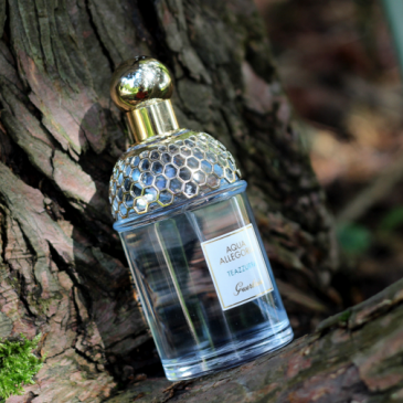 Guerlain – Aqua Allegoria Teazzurra chez Origines Parfums