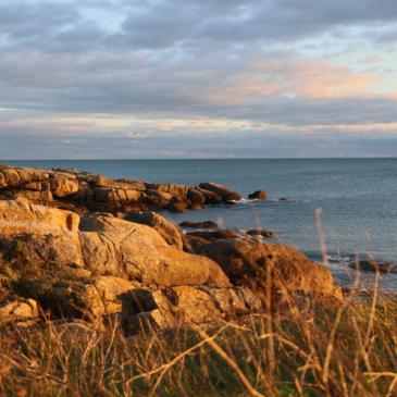 Déclinaisons de couleurs d'hiver dans le Finistère