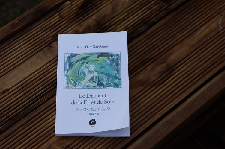 couverture livre diamant de la forêt de soie