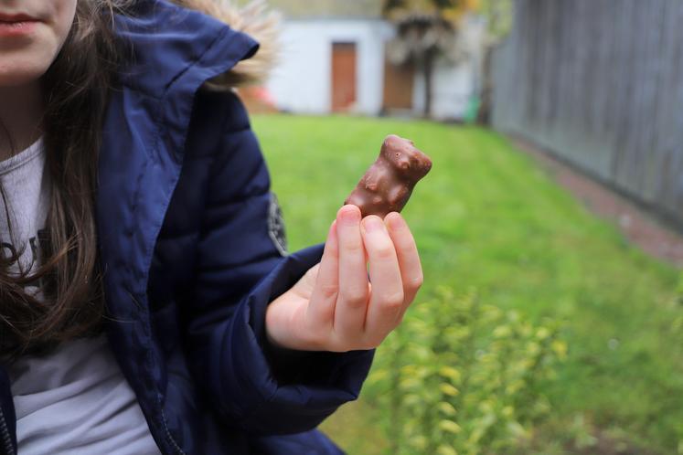 ourson chocolat cemoi
